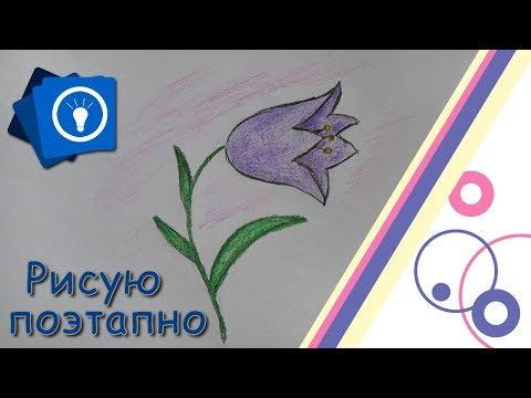 Как рисовать цветы видео уроки