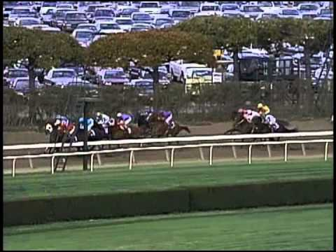 Squirtle Squirt 2001 Breeders Cup Sprint Youtube
