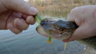 14 апреля 2021г Рыбалка в детском саду Растите быстрее