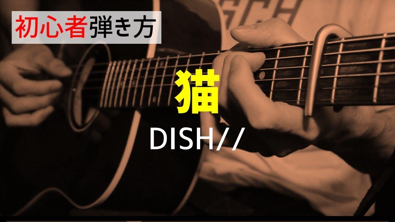 【初心者解説】猫/DISH//【ギターコード】