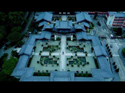 Drone's Eye View of Chi Lin Nunnery, Hong Kong