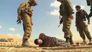 Diplomats delivering aid roughed up by Israeli soldiers
