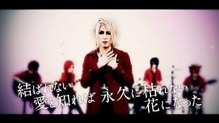 Anli Pollicino「見返りZAKURA」【OFFICIAL MUSIC VIDEO [Full Ver.] 】