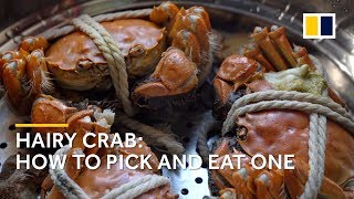 Why hairy crab is all the craze in China