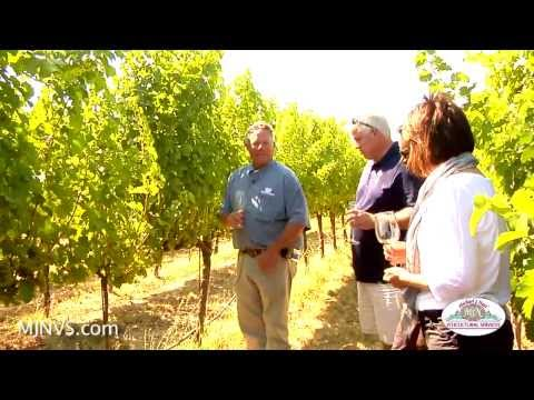 Michael gives a tour of 2 Napa Valley Vineyards