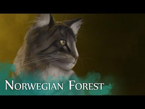 """Norwegian Forest"" - Speed Painting by Adrian Olebinski"