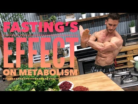 Fasting Effects on Metabolism and Thyroid- Thomas DeLauer
