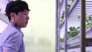 늘푸른채 수경재배기 정가네 밥상 식물공장입니다. #수경…