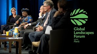 High-level Opening Plenary Discussion GLF 2015