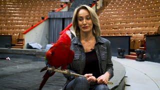 Как подружиться с попугаем. Урок от Елены Бараненко
