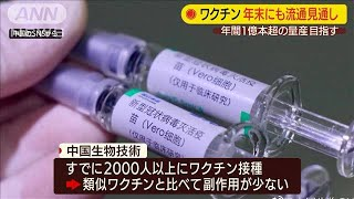 ワクチン年末にも流通見通し 年間1億本超の量産も(20/06/03)