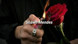 Shawn Mendes; The Weight  'Español'