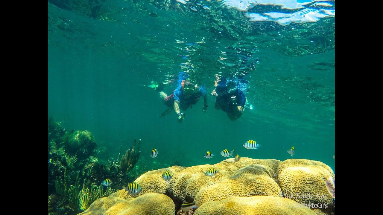 Playa Del Carmen Private Snorkeling Tours