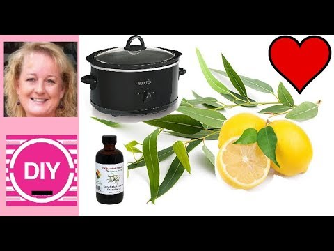 free-soap-recipe-and-testing-eucalyptus-lemon-essential-oil