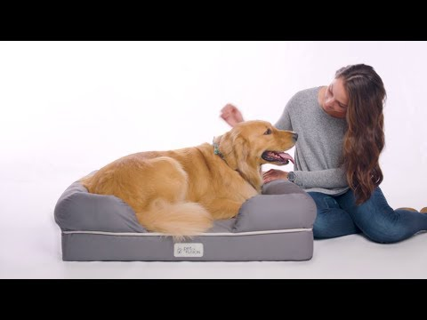 petfusion-ultimate-dog-bed-&-lounge