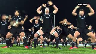 Le Haka de la Nouvelle-Zélande face à la France