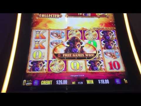 Buffalo Gold Bonus- 100x Win!!!