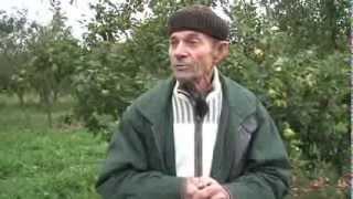 Agriculture durable : entretien avec Bernard Ronot