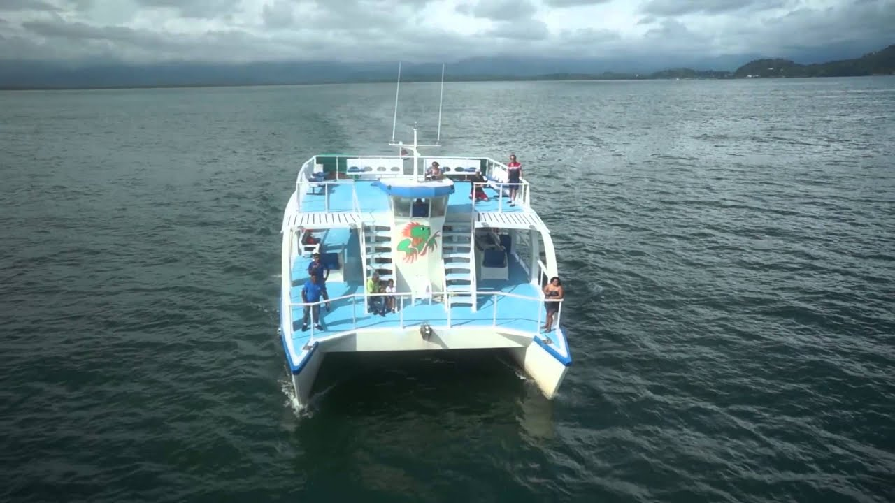 Costa Rica Iguana Tours