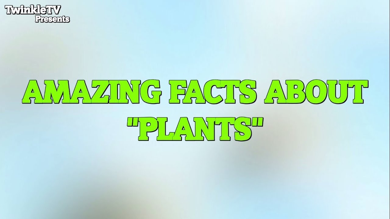 Factopedia Amazing Facts About Plants Youtube