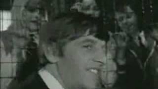 The Beatles- Funny Edits