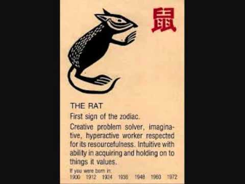 The year of the Rat - Chinese/Taoist Astrology (Wu Xing)