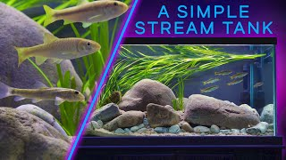 This STREAM Aquarium is Mesmer…