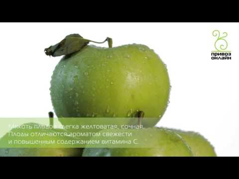 Яблоко зеленое (Апорт)