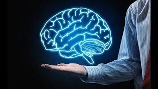 Despre imperfecțiunile creierului... O perspectivă inedită
