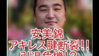 幕内最年長37歳の安美錦 アキレス腱断裂…休場、引退危機 チャンネル登...