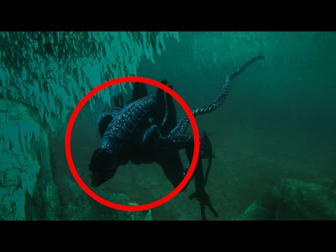 5 Mysterious Deep Sea Creatures Caught On Camera