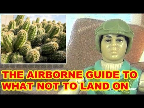 Uncomfortable Objects You'll Land On In The US Airborne