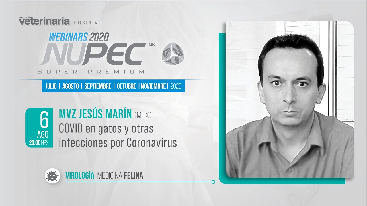 Webinars Nupec 2020 | Virología Medicina Felina