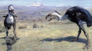 Гигантские птицы кайнозойской эры. Рассказывает палеонтолог Иварс Зупиньш