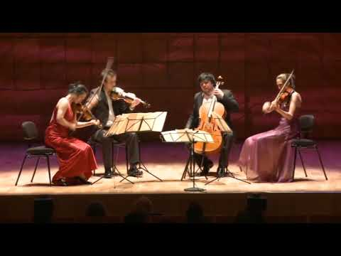 Schubert - Death and the Maiden - Hamer Quartet - 1st Movement (part 1/2)