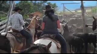 La vie de cowboy la vraie ! Séjour en ranch de travail au Montana avec Cheval d'Aventure
