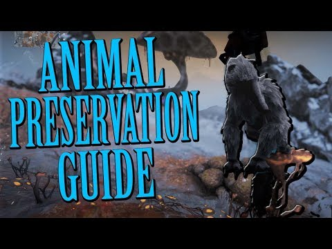 Warframe - FORTUNA - Animal Preservation Guide