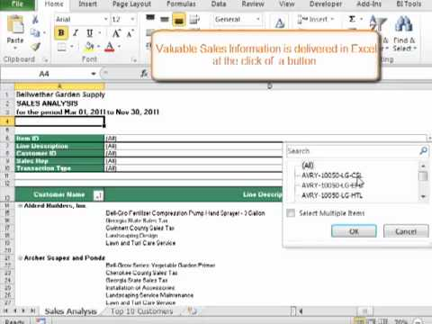 Sage 50 Intelligence Reporting Sales Analysis - YouTube - sales analysis