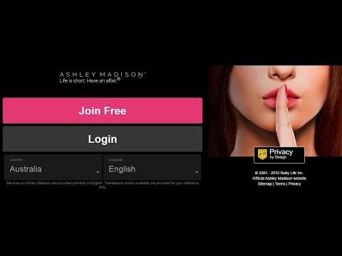 online dating profile database