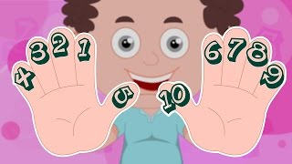 Schoolies | Counting on your Fingers | Numbers Song | Nursery Rhyme | Learn Numbers 123 | Kids Songs