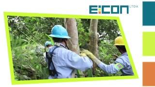 Download CORPORATIVO EICON LTDA MP3 song and Music Video