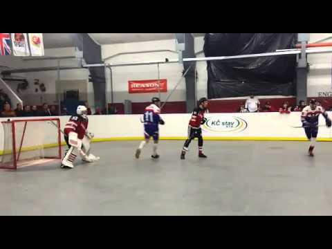 Reasony Ball Hockey Goalie Pads In Action During 2015 World