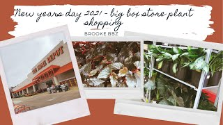 NEW YEARS DAY HOUSEPLANT SHOPPING | big box stores  Lowe's and Home Depot
