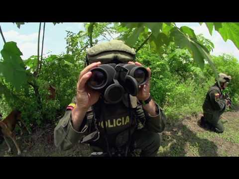 Labor de la Policía Antinarcóticos en puertos y aeropuertos del país