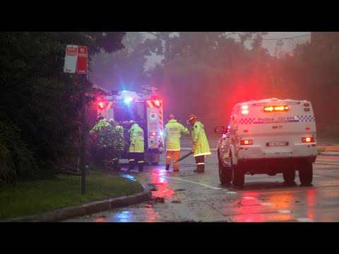 NSW deluge helps douse state's bushfires