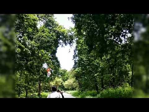 Meri maa ne banaya bhole churma song