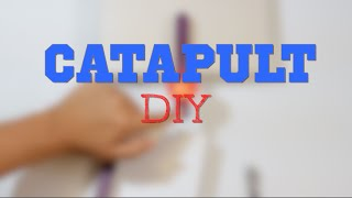 How To Make A Catapult -easy Diy
