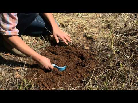 UC Cooperative Extension: How to Collect a Soil Sample for Lab Analysis