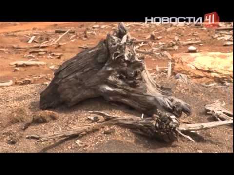 Свердловской области угрожает экологическая катастрофа