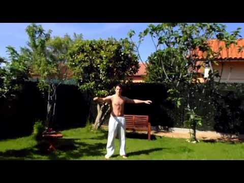 bioenergetica-ii.-ejercicios-de-calentamiento-y-relajación